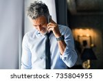 Stock photo mature businessman with smartphone in a hotel room 735804955