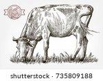 breeding cow. grazing cattle....   Shutterstock .eps vector #735809188