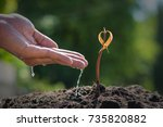 agriculture. growing plants.... | Shutterstock . vector #735820882