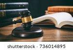 law studies. judge gavel on a... | Shutterstock . vector #736014895