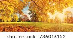 trees with multicolored leaves...   Shutterstock . vector #736016152