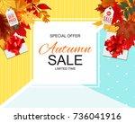 abstract  illustration autumn... | Shutterstock . vector #736041916