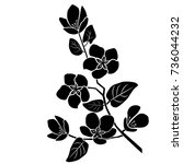 silhouette of apple or cherry...   Shutterstock .eps vector #736044232
