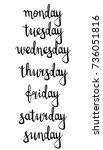 handwritten inscription days of ... | Shutterstock .eps vector #736051816