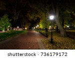 city night park in autumn with... | Shutterstock . vector #736179172
