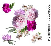 bouquet of flowers isolated on... | Shutterstock . vector #736205002