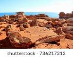 dinosaur footprint in broome ... | Shutterstock . vector #736217212