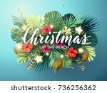 christmas on the summer beach... | Shutterstock .eps vector #736256362