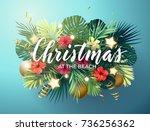 christmas on the summer beach... | Shutterstock .eps vector #736256362