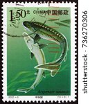 Small photo of CROATIA ZAGREB, 24 SEPTEMBER 2017: a stamp printed in the China shows Chinese Sturgeon, Acipenser Sinensis, Fish, circa 2000