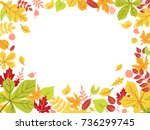 autumn leaves in circle.... | Shutterstock .eps vector #736299745