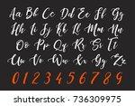 calligraphic chalk letter... | Shutterstock .eps vector #736309975