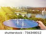 wine and grapes against... | Shutterstock . vector #736348012