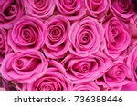 Stock photo many different colored roses in a bouquet on the table 736388446