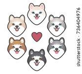 husky color spectrum. siberian... | Shutterstock .eps vector #736404976