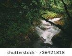 mountain river flowing through... | Shutterstock . vector #736421818