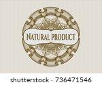 brown passport style rossete... | Shutterstock .eps vector #736471546