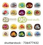 20 minerals  90 foods rich in... | Shutterstock .eps vector #736477432