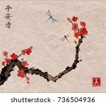 cherry sakura tree branch in... | Shutterstock .eps vector #736504936