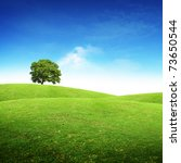 Green Summer Landscape Scenic...