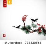 Pine Tree  Sakura Cherry Tree...
