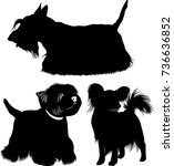collection silhouettes of dogs... | Shutterstock .eps vector #736636852