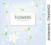 flower background nature... | Shutterstock .eps vector #736640422