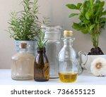 kitchen alchemist nowadays | Shutterstock . vector #736655125