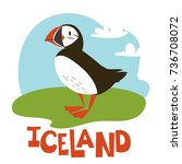 vector illustration of puffin.... | Shutterstock .eps vector #736708072