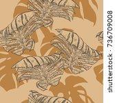 monstera pattern by hand... | Shutterstock .eps vector #736709008