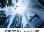 Modern office building.low angle view of skyscrapers in city of Singapore. Modern office building.low angle view of skyscrapers in city of Singapore. silhouette bird over the sky.