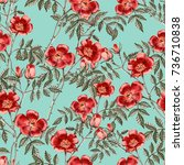 background with a red rose.... | Shutterstock . vector #736710838