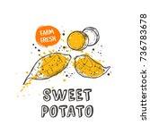 sweet potato isolated set. hand ... | Shutterstock .eps vector #736783678
