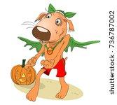halloween   a dog in a bat suit ... | Shutterstock .eps vector #736787002