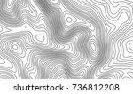topographic map contour... | Shutterstock .eps vector #736812208
