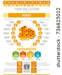 food infographics poster  honey ... | Shutterstock .eps vector #736825012