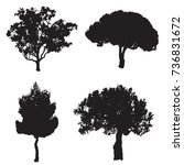 vector set with four silhouette ... | Shutterstock .eps vector #736831672