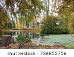 lake in an autumn landscape | Shutterstock . vector #736852756