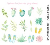 watercolor cactus and spring...   Shutterstock . vector #736854358