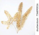 set of golden leaf design... | Shutterstock . vector #736890016