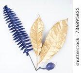 golden and blue gold leaf.... | Shutterstock . vector #736895632
