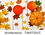 thanksgiving background ... | Shutterstock . vector #736972015