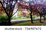 autumn in countryside | Shutterstock . vector #736987672