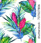 tropical floral seamless ... | Shutterstock . vector #737027806
