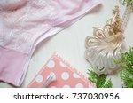 tender pink underwear on the...   Shutterstock . vector #737030956
