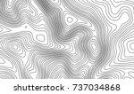topographic map contour... | Shutterstock .eps vector #737034868