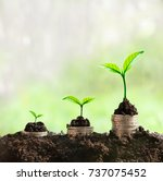 grow in sunlight can be symbol... | Shutterstock . vector #737075452