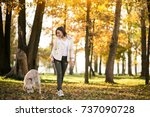 girl with dog | Shutterstock . vector #737090728