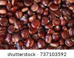 Ripe chestnuts close up. raw...