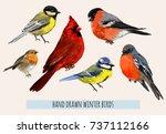 Stock vector beautiful hand drawn vector illustration with winter birds bullfinch robin bird red cardinal 737112166